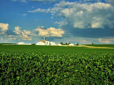 Iowa Soybean Farm Poster