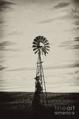 Iowa Windmill In A Corn Field Poster by Wilma  Birdwell