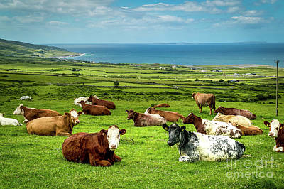 Ireland - Westcoast Poster by Juergen Klust