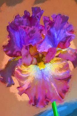 Iris 68 Poster by Pamela Cooper