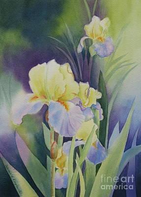 Iris Poster by Deborah Ronglien
