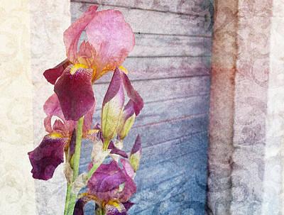 Iris In A Doorway Poster