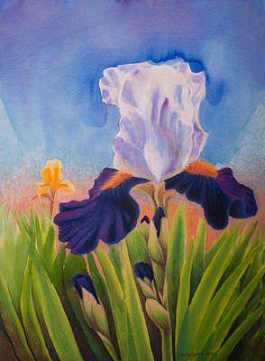 Iris Morning Poster