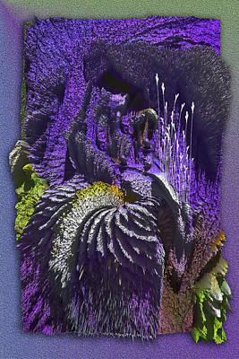 Iris Mountain Poster by Eugenia Martini-Jarrett