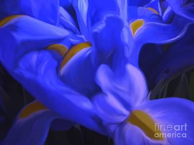 Iris Sparkle Poster
