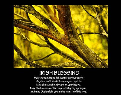 Irish Blessing Poster by Bonnie Bruno