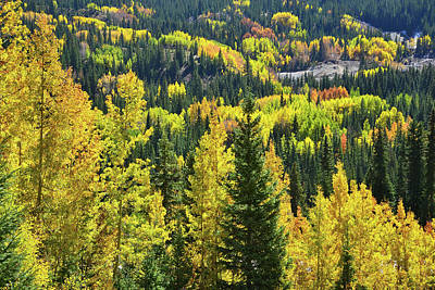 Poster featuring the photograph Ironton Fall Color by Ray Mathis
