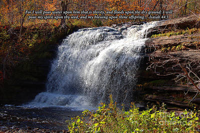 Poster featuring the photograph Isaiah 44 by Diane E Berry