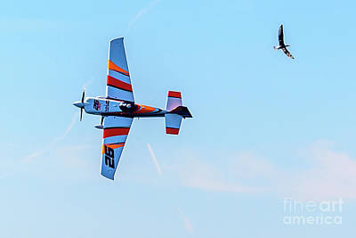 It's A Bird And A Plane, Red Bull Air Show, Rovinj, Croatia Poster