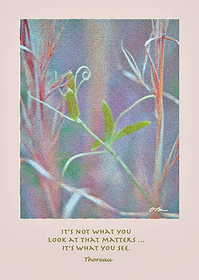 It's Not What You Look At Poster by Claudia O'Brien