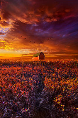 It's The Fire And The Wings That Fly Us Home Poster by Phil Koch