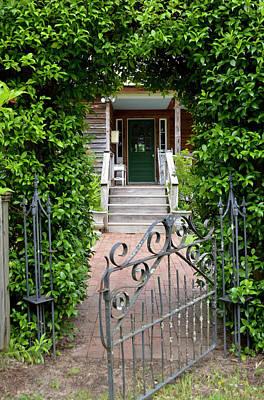 Ivy Archway Poster by David Crockett