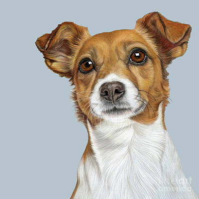 Poster featuring the drawing Jack Russell Terrier by Donna Mulley