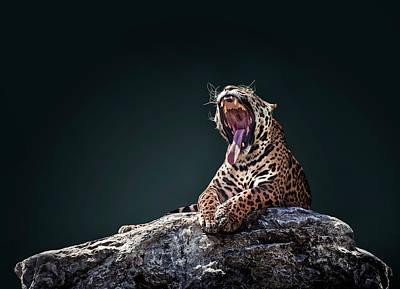 Jaguar 4 Poster by Ivan Vukelic