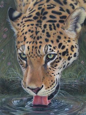 Jaguar  Poster by Becky Chan