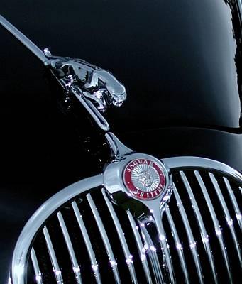 Jaguar Hood Ornament Poster