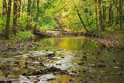 Jamison Creek Poster by Amanda Kiplinger