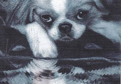 Japanese Chin Deep Thoughs Poster by Joshua Hullender