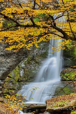 Japanese Falls Poster