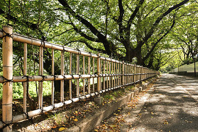 Japanese Fence In Autumn  Poster