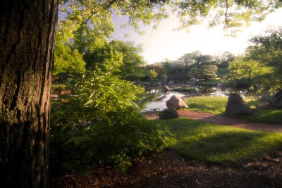 Japanese Garden In The Morning Poster