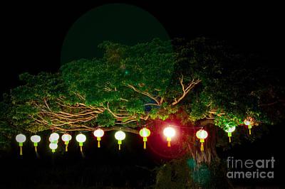 Japanese Lantern Tree Poster