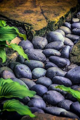 Japanese Rock Garden Poster by Julie Palencia
