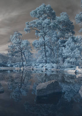 Poster featuring the photograph Japanese Tea Garden Infrared Center by Joshua House