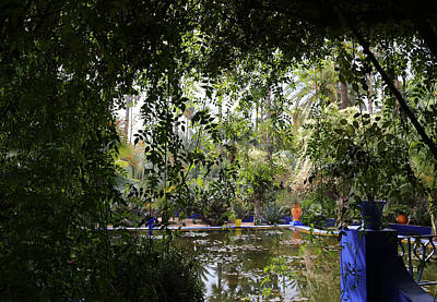 Poster featuring the photograph Jardin Majorelle 2 by Andrew Fare