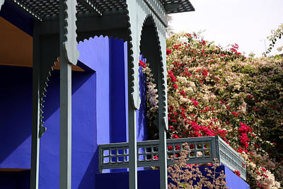 Poster featuring the photograph Jardin Majorelle 3 by Andrew Fare