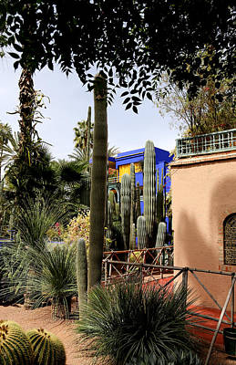 Poster featuring the photograph Jardin Majorelle 4 by Andrew Fare
