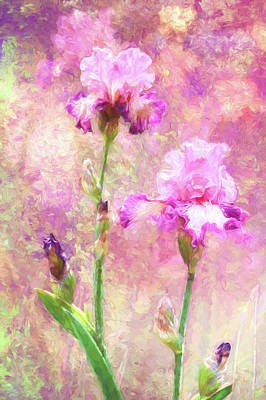 Jazzy Irises Poster by Diane Schuster