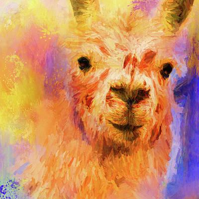 Jazzy Llama Colorful Animal Art By Jai Johnson Poster by Jai Johnson