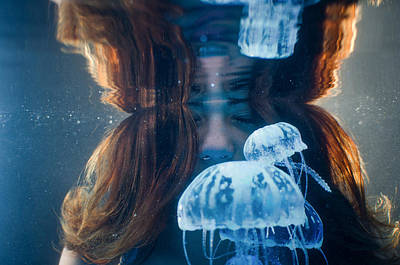 Jellies Reflection Poster