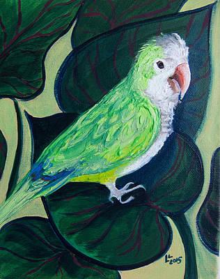 Jingles The Parrot Poster