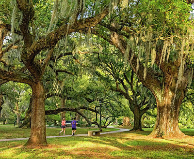 Jogging In City Park - New Orleans Poster