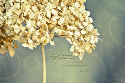 John Lennon Love Poster