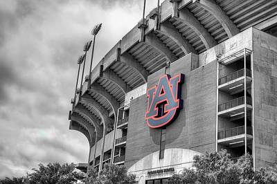 Jordan Hare Poster by JC Findley