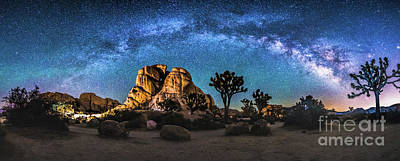 Joshua Tree Milkyway Poster