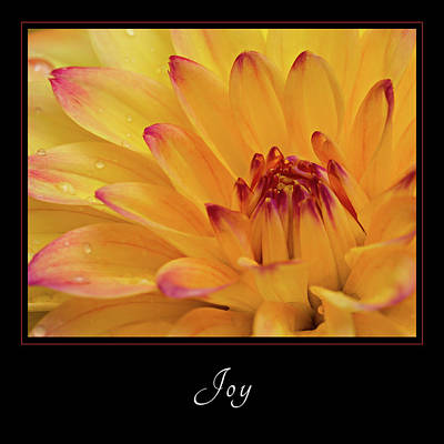 Poster featuring the photograph Joy 1 by Mary Jo Allen