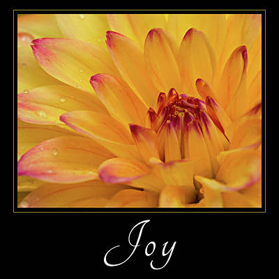 Poster featuring the photograph Joy by Mary Jo Allen