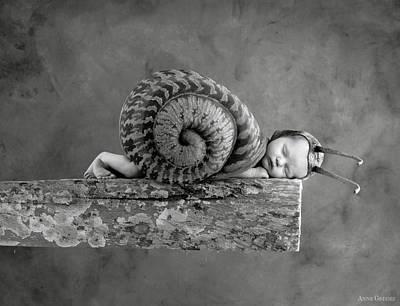 Julia Snail Poster