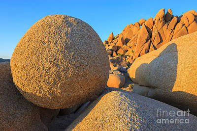 Jumbo Rocks In Joshua Tree Np Poster