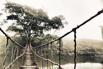 Jungle Journey 7 Poster by Skip Nall