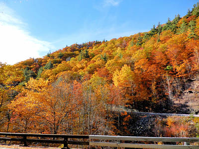 Kaaterskill Falls Ny 23a 4 Poster by Lanjee Chee