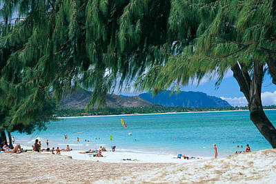 Kailua Beach Park Poster by Peter French - Printscapes