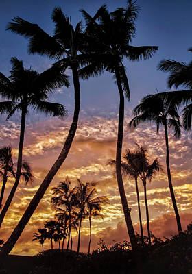 Kalapki Sunset Poster