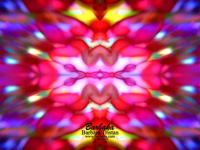 Poster featuring the photograph Kaleidoscope Wonder by Barbara Tristan