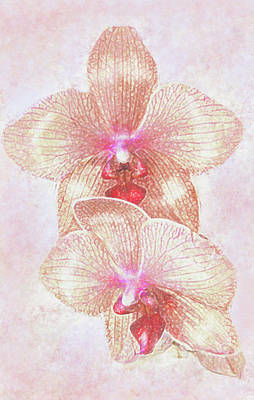 Poster featuring the digital art Kaleidoscope Orchid  by Jane Schnetlage