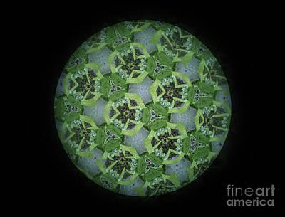 Kaleidoscopic Floral Poster